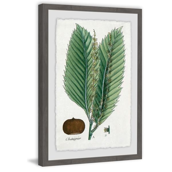 Marmont Hill - Handmade Flore des Environs de Paris Framed Print. Opens flyout.