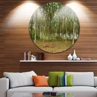 Phase1 Designart 'Rubber Tree Plantation during Midday' Landscape Circle Wall Art