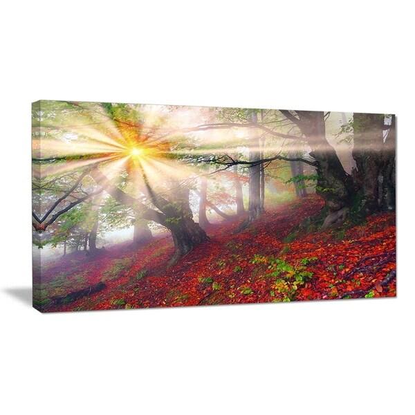 Premium Glasbild AG5705000819 DEKO 50 x 70 cm LILIE FLORAL SEPIA
