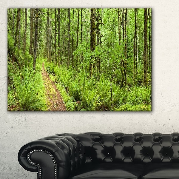 Lush Forest Path Columbia River - Forest Canvas Wall Art Print -  DESIGN ART, PT11137