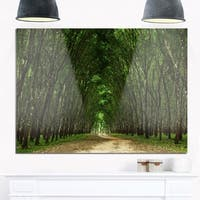 Pathway in Thick Green Forest - Landscape Photo Glossy Metal Wall Art