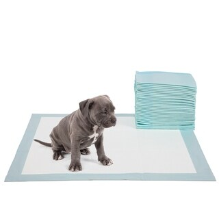 Paws & Pals Puppy Potty Pads, 5-Layer Durable, Leakproof Training Pads - 22x22-inch 30 count