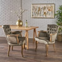 Rumi Traditional Velvet Armed Dining Chair (Set of 2) by Christopher Knight Home