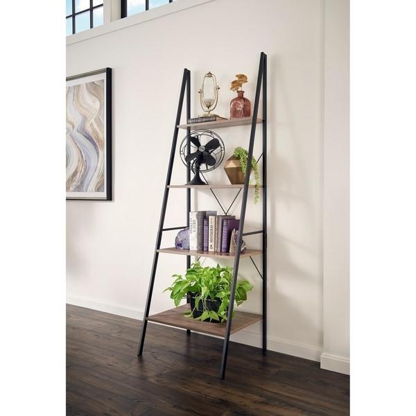 Carbon Loft Morse Industrial Ladder Bookshelf