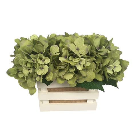 HYDRANGEA WOOD POTTED