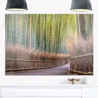 Pathway Inside Bamboo Forest - Forest Glossy Metal Wall Art