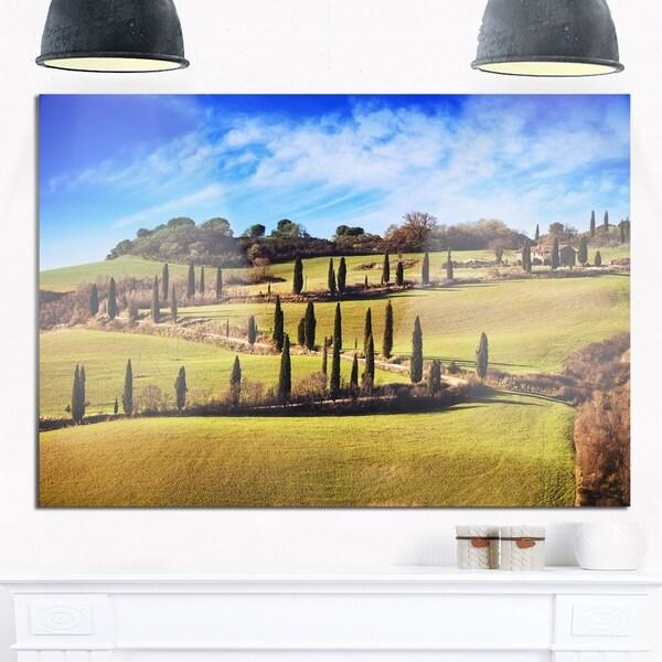 Cypress Trees Scenic Road Siena Italy - Oversized Landscape Glossy ...