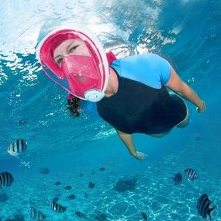 Full Face Snorkel Mask Go Pro Compatible