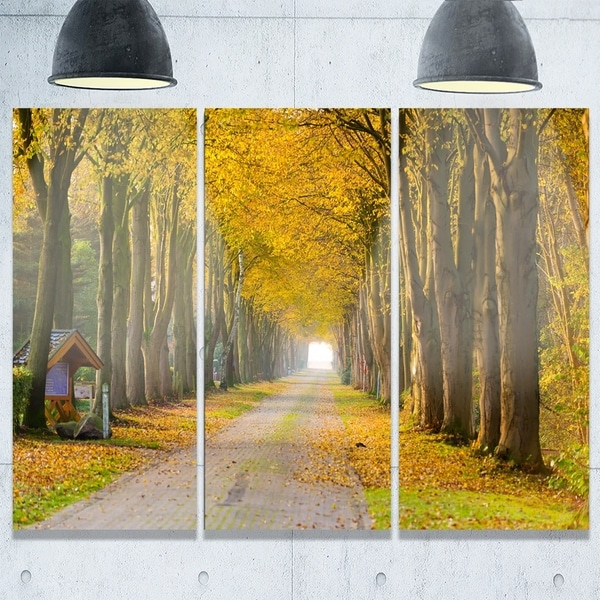 Designart - Country Road Below Yellow Trees - Landscape Photo Glossy ...