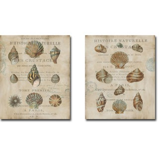Shell Collection I and II by Deborah Devillier 2-piece Gallery-Wrapped Canvas Giclee Art Set