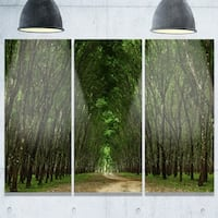Designart - Pathway in Thick Green Forest - Landscape Photo Glossy Metal Wall Art - 36W x 28H 3 Panel