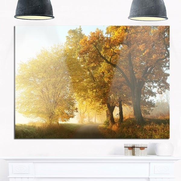 Rural Road Under Green Trees - Landscape Photo Glossy Metal Wall Art ...