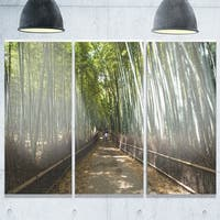Wide Pathway in Bamboo Forest - Forest Glossy Metal Wall Art - 36Wx28H - 36W x 28H 3 Panel
