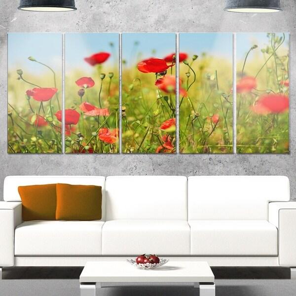 Designart \'Wild Poppy Flowers in Green Garden\' Floral Metal Wall Art ...