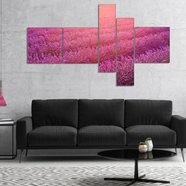 Designart 'Lavender Field and Ray of Light' Floral Canvas Art Print