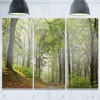 Designart - Green Beach Forest Pathway - Landscape Photo Glossy Metal Wall Art