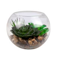 Decorative Plant in Glass Bowl