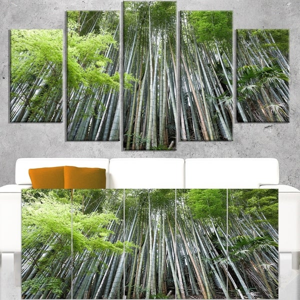 Dense Bamboo Forest of Japan - Forest Canvas Wall Art Print