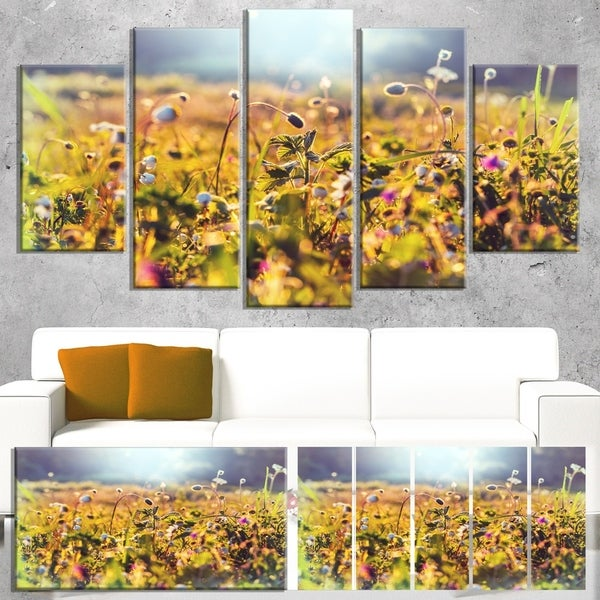 Designart 'Summer Flowers on Sunny Day' Floral Canvas Art Print
