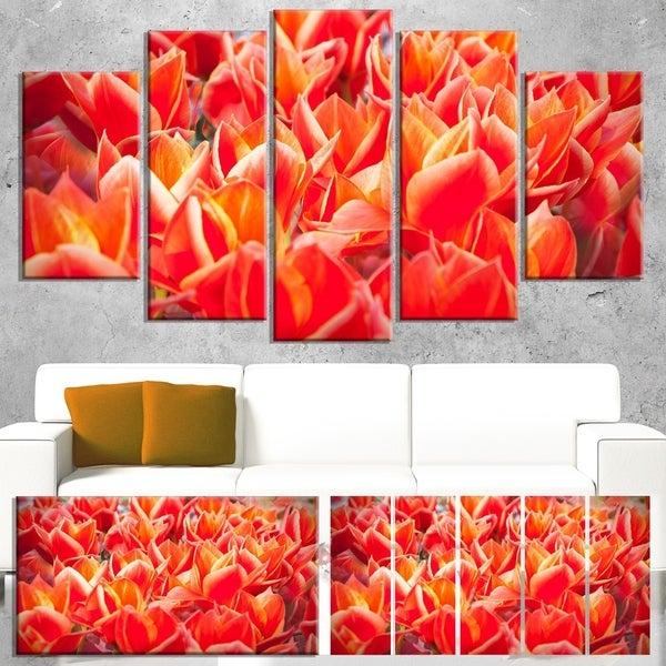 Designart 'Tulip Flowers in the Keukenhof Park' Modern Floral Wall Artwork