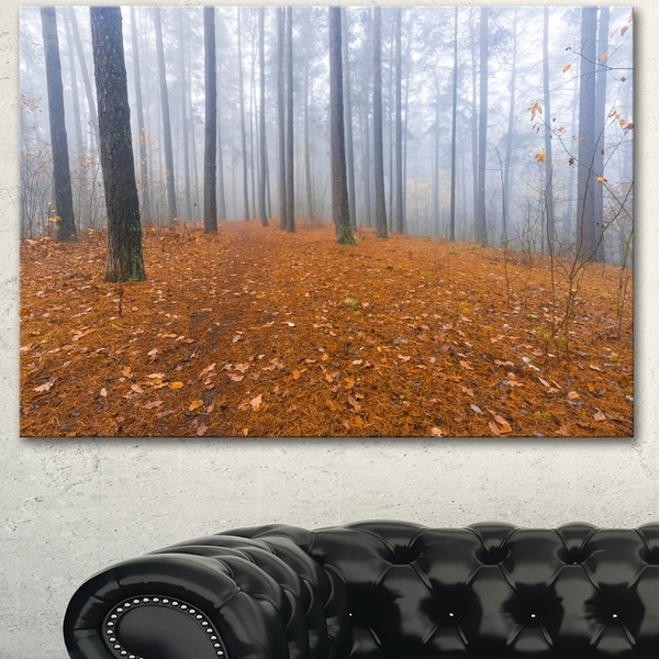 Designart 'Foggy Forest and Fallen Leaves' Modern Forest Canvas Art
