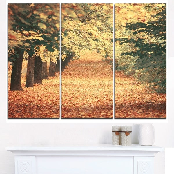 Autumn Forest with Walking Path - Modern Forest Canvas Wall Art