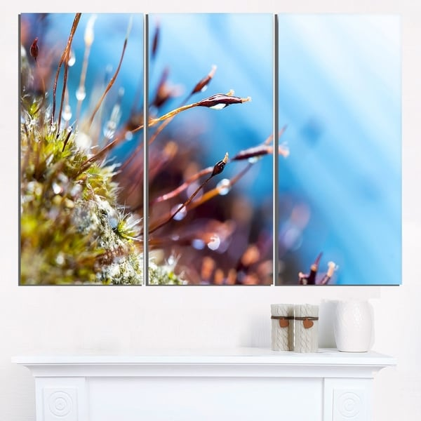 Abstract Moss Flowers in Summer Spring - Landscape Art Print Canvas