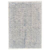 Grand Bazaar Michener Blue Viscose Cotton Rug - 9'6 x 13'6