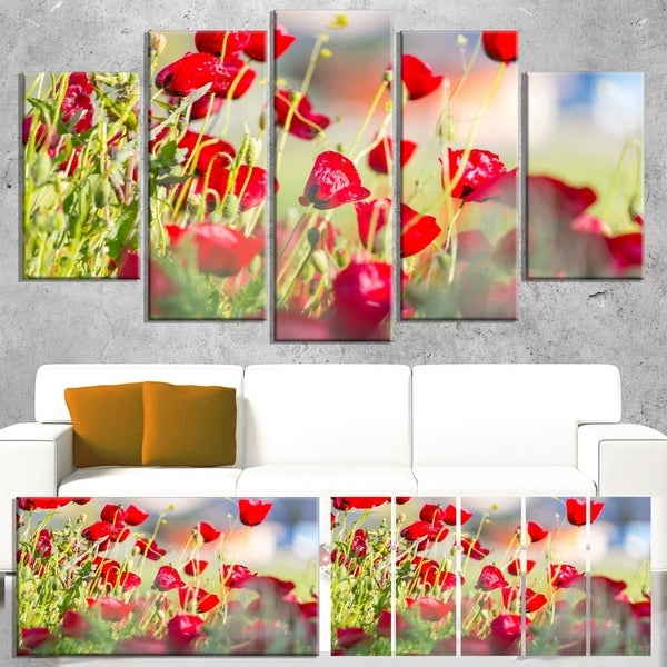 Designart 'Beautiful Red Poppy Flowers View' Modern Flower Canvas Art Print