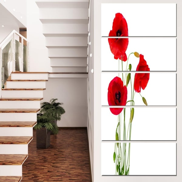 Designart 'Isolated Red Poppy Flowers' Modern Floral Artwork on Canvas