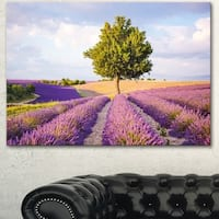 Lonely Green Tree in Lavender Field - Extra Large Landscape Canvas Art