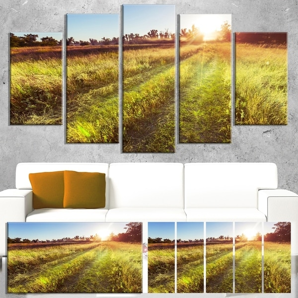Designart 'Farm Road in Rural Meadow' Landscape Art Print Canvas