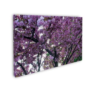Copper Grove Dan Wilson 'Spring Flowers' Gallery Wrapped Canvas Art