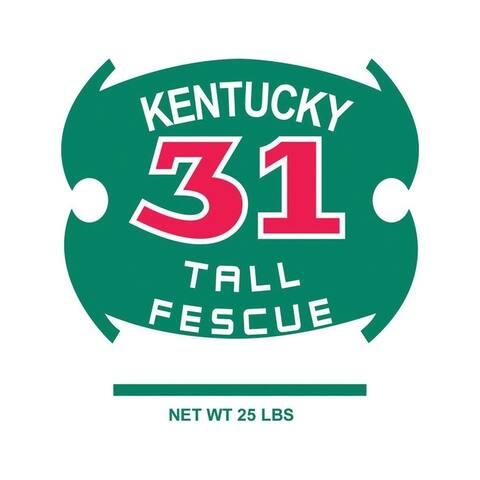 Barenbrug Kentucky 31 Tall Fescue Grass Seed 25 lb.