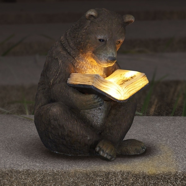 shop solar bear reading book free shipping on orders over 45
