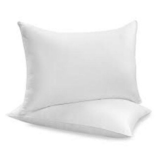 NDP Bedding Pillow Dust Mite Resistant Down Alternative Standard-size Soft PIllow (Set of 2)