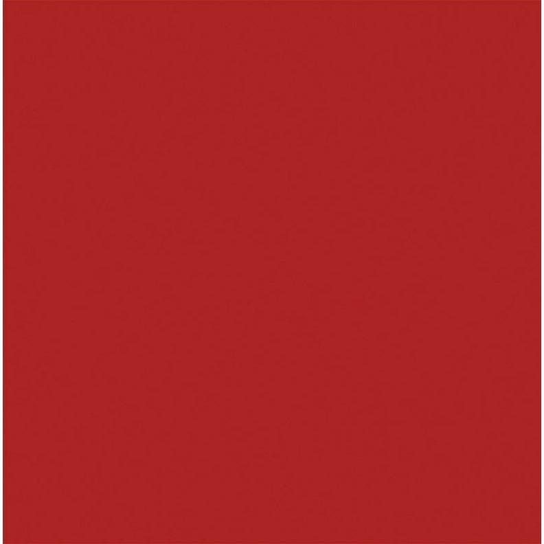 BEYOND PAINT  All-In-One  Interior/Exterior  Acrylic  Paint  Poppy  Flat  1 gal. Water Base