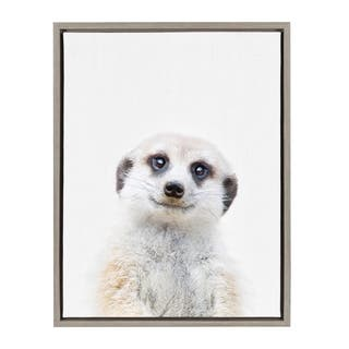Sylvie Baby Meerkat Animal Print Framed Canvas Art by Amy Peterson