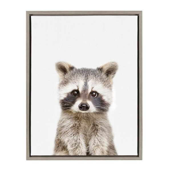 Shop Sylvie Baby Racoon Animal Print Framed Canvas Wall Art by Amy ...