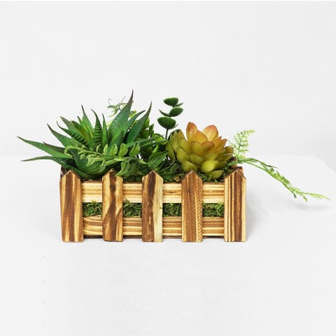 Puleo International Artificial Succulents In Desk Top Wood Planter