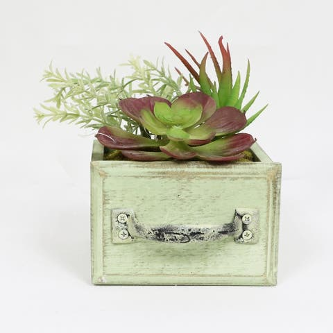 Puleo International Artificial Succulents in Desk Top Wood Planter