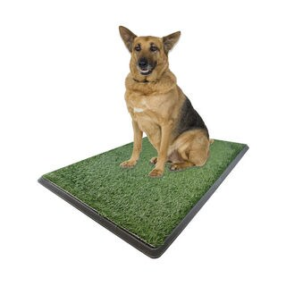 "X Large Dog Potty Grass Pet Potty Patch Dog Training Bathroom Pad - Indoor Outdoor Use 30""X20""X2"