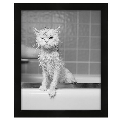 Bert's Bath by James Flad Framed Print