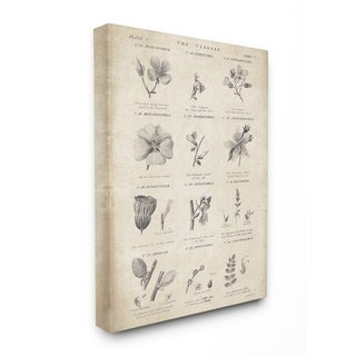 Stupell Industries Conversations On Botany Wall Art