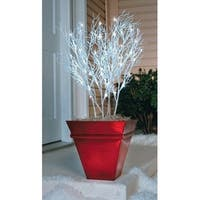 Celebrations  LED Branches  Pathway Markers  White  PVC  35 in. 4 pc.