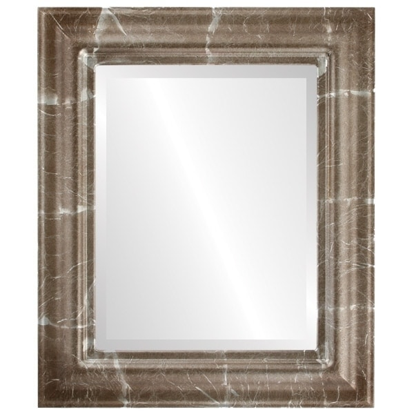 Lancaster Framed Rectangle Mirror in Champagne Silver - Antique Silver (Medium (15-32 high) - 25x29)