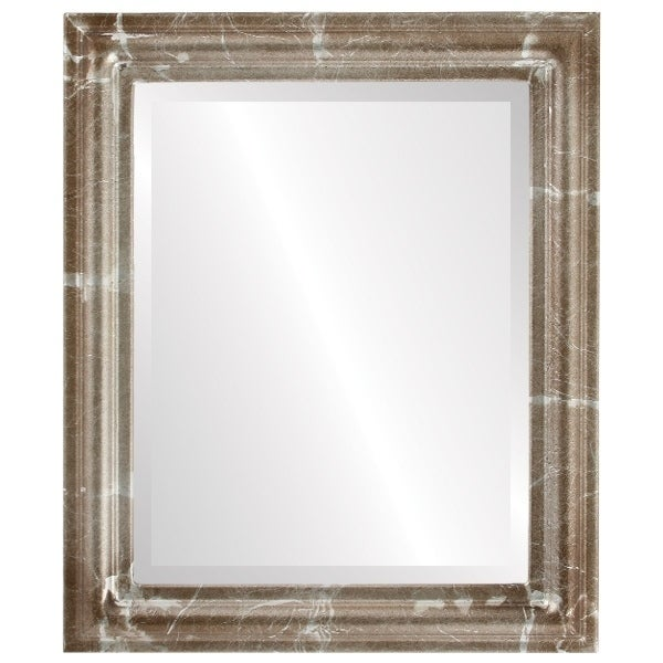 Philadelphia Framed Rectangle Mirror in Champagne Silver - Antique Silver (Medium (15-32 high) - 21x27)