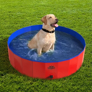 Pet Pool and Bathing Tub-Foldable with Carrying Bag Included