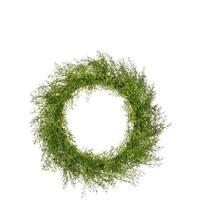 Feather Fern Wreath