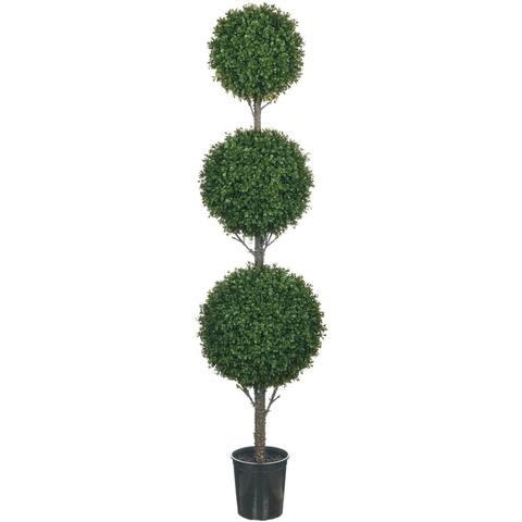 Boxwood 3 Tier Topiary Tree